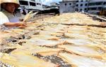 Good weather for drying fish in China's Sanya
