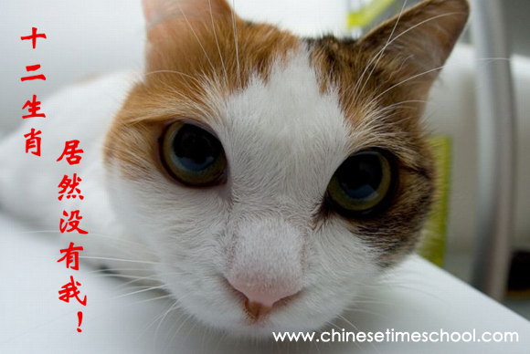 Chinese Zodiac-why there is no cat