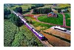 Tourist train seen in Dongxuzhuang scenic spot, N China's Hebei